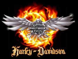 Heřmanský povýšil v Harley-Davidsonu