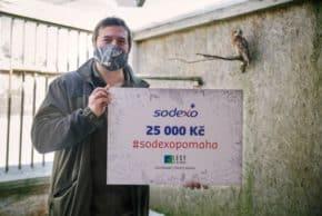 Sodexo rozdělilo mezi potřebné 100 tisíc korun